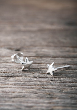 Silver earrings morning star