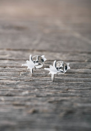 Silver earrings star- limited edition
